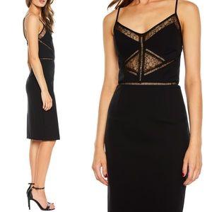 Bardot Dresses - Black Lace Dress Bardot Jayne Lace Cocktail Dress